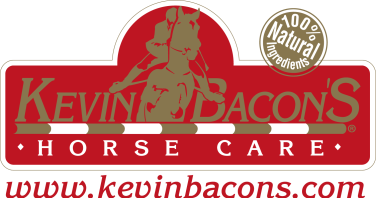 kevin bacon's png